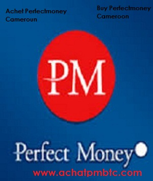 Perfect money review